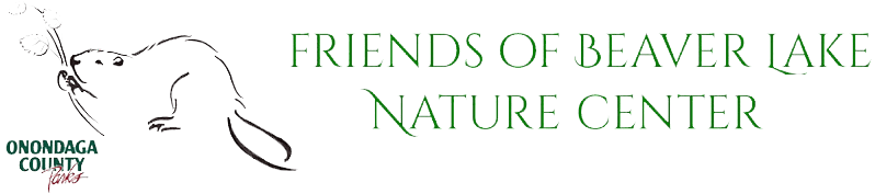 Friends of Beaver Lake Nature Center